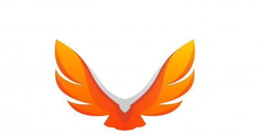 לעצב לוגו בתוכנת עיצוב גרפי