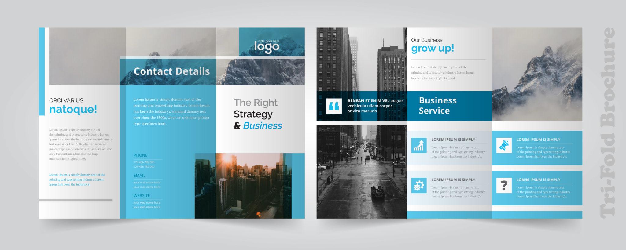 עיצוב אתרי אינטרנט – מקצוע מעצב אתרים
