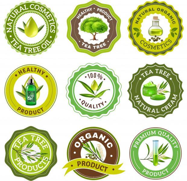 עיצוב לוגו - עיצוב גרפי נקי עם טיפוגרפיה נכונה