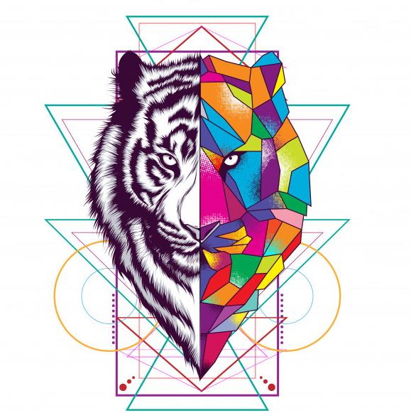 תוכנת אילוסטרייטור ופוטוושפ בעיצוב גרפי